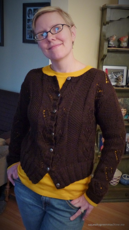 chocolate brown cardigan