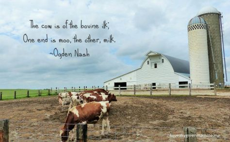 Ogden Nash poem The cow is of the bovine ilk; One end is moo, the other, milk.