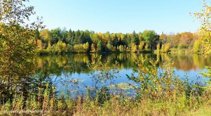 Minnesota's Last True Wilderness